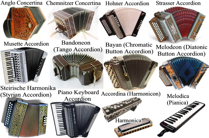 "Accordions (from 19th century German Akkordeon, from Akkord—""musical chord, concord of sounds"") are a family of box-shaped musical instruments of the bellows-driven free-reed aerophone type, colloquially referred to as a squeezebox. A person who plays the accordion is called an accordionist. The concertina and bandoneón are related; the harmonium and American reed organ are in the same family. The accordion is widely spread across the world. In some countries (for example Brazil, Colombia and Mexico) it is used in popular music (for example Forró, Sertanejo and B-Pop in Brazil), whereas in other regions (such as Europe, North America and other countries in South America) it tends to be more used for dance-pop and folk music and as well as in regional and is often used in folk music in Europe, North America and South America. Nevertheless, in Europe and North America, some popular music acts also make use of the instrument. Additionally, the accordion is also used in cajun, zydeco, jazz music and in both solo and orchestra performances of classical music. The piano accordion is the official city instrument of San Francisco, California. Many conservatories in Europe have classical accordion departments. The oldest name for this group of instruments is harmonika, from the Greek harmonikos, meaning harmonic, musical. Today, native versions of the name accordion are more common. These names refer to the type of accordion patented by Cyrill Demian, which concerned ""automatically coupled chords on the bass side"". 1.- Piano Accordion: A piano accordion is an accordion equipped with a right-hand keyboard similar to a piano or organ. Its acoustic mechanism is more that of an organ than a piano, as they are both wind instruments, but the term ""piano accordion""—coined by Guido Deiro in 1910—has remained the popular nomenclature. It may be equipped with any of the available systems for the left-hand manual. 2.- Anglo Concertina: The Anglo or Anglo-German concertina is a member of the concertina family of free-reed instruments. The Anglo originated as a hybrid between the English and German concertinas. The button layouts are generally the same as the original 20-button German concertinas designed by Carl Friedrich Uhlig in 1834. 3.- Strasser Accordion: In 1919 a forester by trade, Anton Strasser chooses a physically less demanding profession following a war injury. Aged 22 he begins his second apprenticeship – this time as an accordion maker – under Robert Zechner. In 1926, on completing his apprenticeship he establishes the Strasser accordion company in an abandoned garage in the Austrian city of Graz. Around 1939, Increasing sales necessitate a move to larger premises. Anton Strasser modernizes his business, emphasizing the change with a new company logo and slogan: ""Harmonica production with electric machines"". All kinds of accordions were built: Schrammel accordions, chromatic accordions with buttons and keys, and, in particular, that traditional diatonic alpine accordion, the ""Steirische Harmonika"". With their lightweight construction and the many technical improvements made by Anton Strasser, the company's instruments soon count among the most popular accordions far beyond Strasser's home town, with exports to the Netherlands and the USA already gathering pace. 4.- Hohner Accordion: Since 1857, HOHNER has been crafting the highest quality musical instruments in the World. They make harmonicas, accordions, melodicas, recorders and guitars to name a few. The German Harmonica and Accordion Museum in Trossingen, which houses the famous HOHNER collection, is quite simply unique and tells the HOHNER history like no one else. More than 25000 different harmonicas, lovingly preserved by curator Martin  Häffner, make up the largest single collection on the world. But the museum doesn't only exhibit musical instruments, it also shows rare  films, recordings, sales displays, advertising posters and much more. The  exciting story of Matthias HOHNER, his rise to fortune and the assimilation of his numerous competitors is all documented in the main museum building. Special exhibitions are shown in the new premises a short distance away in Bau V, a huge former factory building on the original HOHNER factory site. 5.- Musette Accordion: The word musette was originally the name for a bagpipe-like instrument played in the courts of France's upper classes during the 17th and 18th Centuries. Eventually it fell out of favor with the privileged population and was picked up by the country's rural peoples, especially those in the central Auvergne region. When the Auvergnats moved to Paris in search of work in the early 1800s, they brought their folk music to town, many of them opening cafés that catered to factory workers and their families. It was in these cafés that Sunday dances, or bals musette as they came to be known, began to be held. In the 1870s, another wave of immigrants began to pour into Paris, this time largely from Italy. The uprooted Italians settled into the same working-class neighborhoods as the Auvergnats, and brought their own musical instrument with them: the accordion. The instrument was at first vehemently rejected by the earlier inhabitants, but after a period of often violent resistance the Auvergnat musicians came to embrace the ""box of thrills, and it eventually became the scene's dominant instrument. Soon, the fare being played at the café dances began to reflect the city's diverse culture, mixing the styles of the French countryside with Italian cantos, Manouche gypsy music and Polish and German waltzes, polkas and mazurkas. This galvanizing, cross-pollinating period is acknowledged as the birth of the true musette style. 6 / 7.- Harmonica: The harmonica, also known as a French harp or mouth organ, is a free reed wind instrument used worldwide in many musical genres, notably in blues, American folk music, classical music, jazz, country, and rock and roll. There are many types of harmonica, including diatonic, chromatic, tremolo, octave, orchestral, and bass versions. A harmonica is played by using the mouth (lips and tongue) to direct air into or out of one or more holes along a mouthpiece. Behind each hole is a chamber containing at least one reed. A harmonica reed is a flat elongated spring typically made of brass, stainless steel, or bronze, which is secured at one end over a slot that serves as an airway. When the free end is made to vibrate by the player's air, it alternately blocks and unblocks the airway to produce sound. 8.- Melodica (Pianica): The melodica, also known as the pianica, blow-organ, key harmonica, or melodyhorn, is a free-reed instrument similar to the pump organ and harmonica. It has a musical keyboard on top, and is played by blowing air through a mouthpiece that fits into a hole in the side of the instrument. Pressing a key opens a hole, allowing air to flow through a reed. The keyboard is usually two or three octaves long. Melodicas are small, light, and portable. They are popular in music education, especially in Asia. The modern form of the instrument was invented by Hohner in the 1950s, though similar instruments have been known in Italy since the 19th century. The melodica is known by various names, often at the whim of the manufacturer. Melodion (Suzuki), Triola (Seydel), Melodika (Apollo), Melodia (Diana), Pianica (Yamaha), Melodihorn (Samick), Pianetta and Clavietta are just some of the variants. This can lead to some confusion, as many people will use different names as a blanket term to describe all of these instruments. 9.- Accordina (Harmonicon): The button accordina was invented and made by André Borel under the name 'Chromatic Harmonicon'. Things change a lot in the free-reed world. Accordinas are reappearing since few years. It went unnoticed for a long time. Accordion-players ignored it and public did not even know it. This hybrid between accordion and harmonica was born from André Borel's imagination, in the late 30'. Today, it is made again and people develop a passion for it, going against the fate which surrounded the story of this instrument."