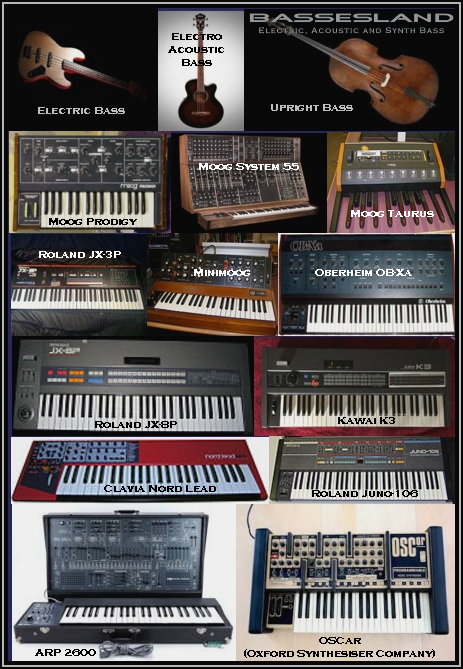 bassesland instruments overview electric acoustic and synth bass vst plugin minimoog roland. Black Bedroom Furniture Sets. Home Design Ideas