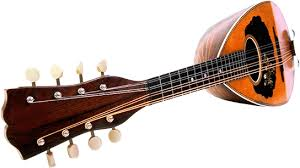 "A mandolin (Italian: mandolino; literally ""small mandola"") is a musical instrument in the lute family and is usually plucked with a plectrum or ""pick"". It commonly has four courses of doubled strings tuned in unison (8 strings), although five (10 strings) and six (12 strings) course versions also exist. The courses are normally tuned in a succession of perfect fifths. It is the soprano member of a family that includes the mandola, octave mandolin, mandocello, and mandobass."